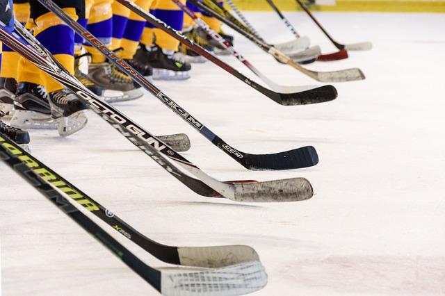 Nastoupení hokejisté